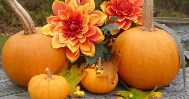 Decorating your Front Porch For the Fall