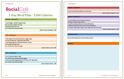 1 Day Meal Plan - 1200 Calories - SocialCafe Magazine - FREE Download