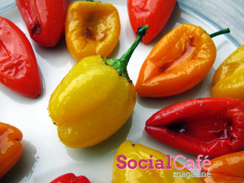 You are at: Home » Food & Recipes » Roasted Mini Sweet Peppers